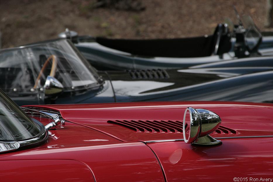 Jaguar bonnets