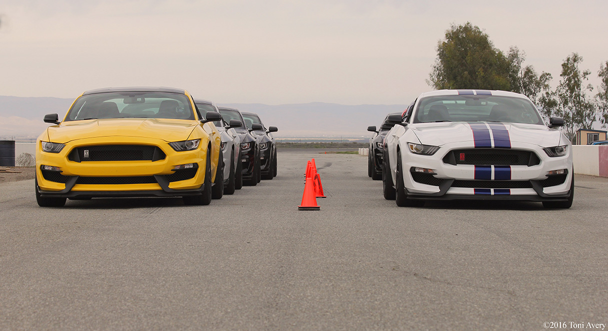 GT350 North American Track Tour car lineup 2