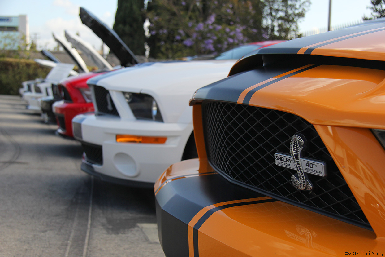 Shelby Car Show 2