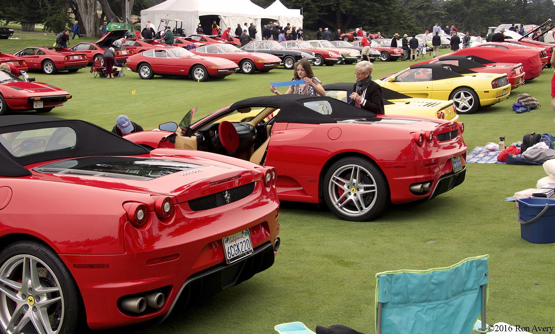 Concorso Italiano rear of Ferraris