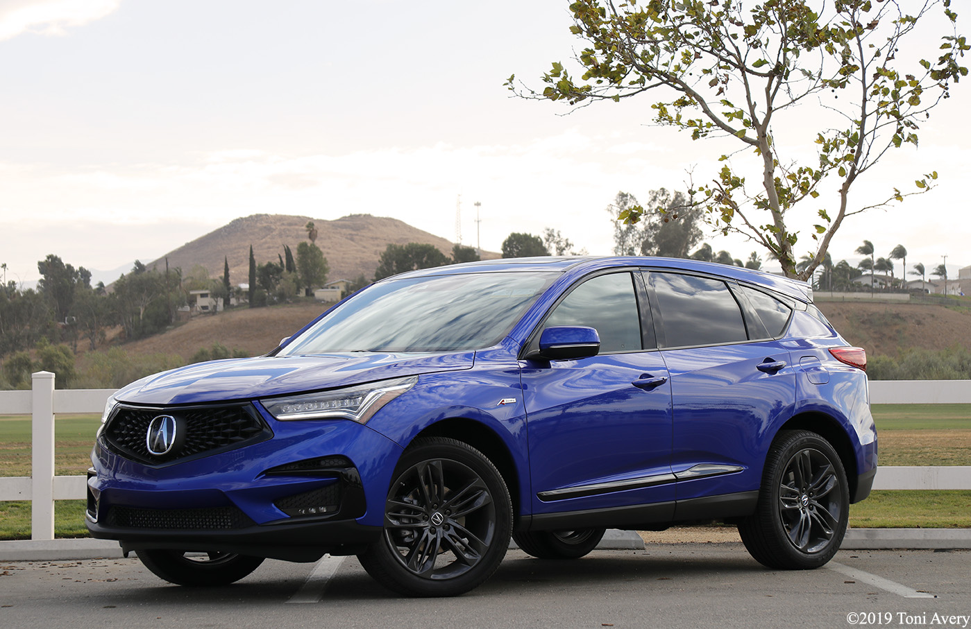 2020 Acura RDX A-spec Review (w/ video)