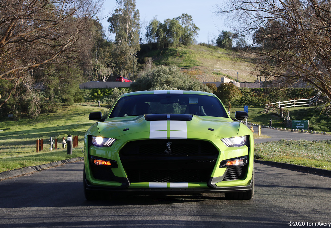 2020 Ford Mustang GT500 Review (w/ video)